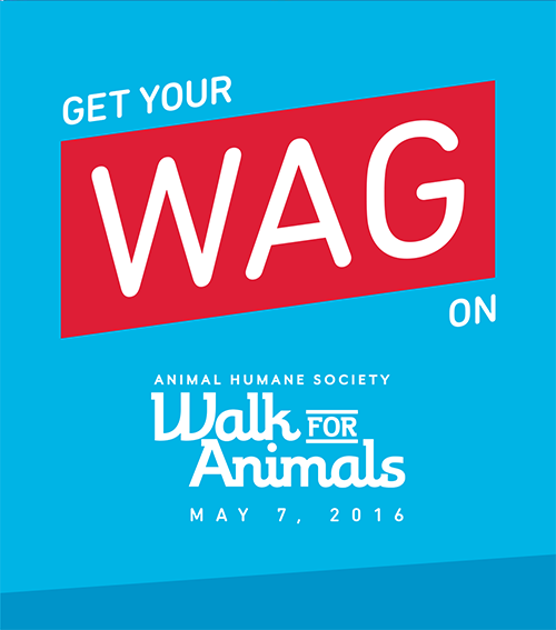 Walk for Animals 2016!