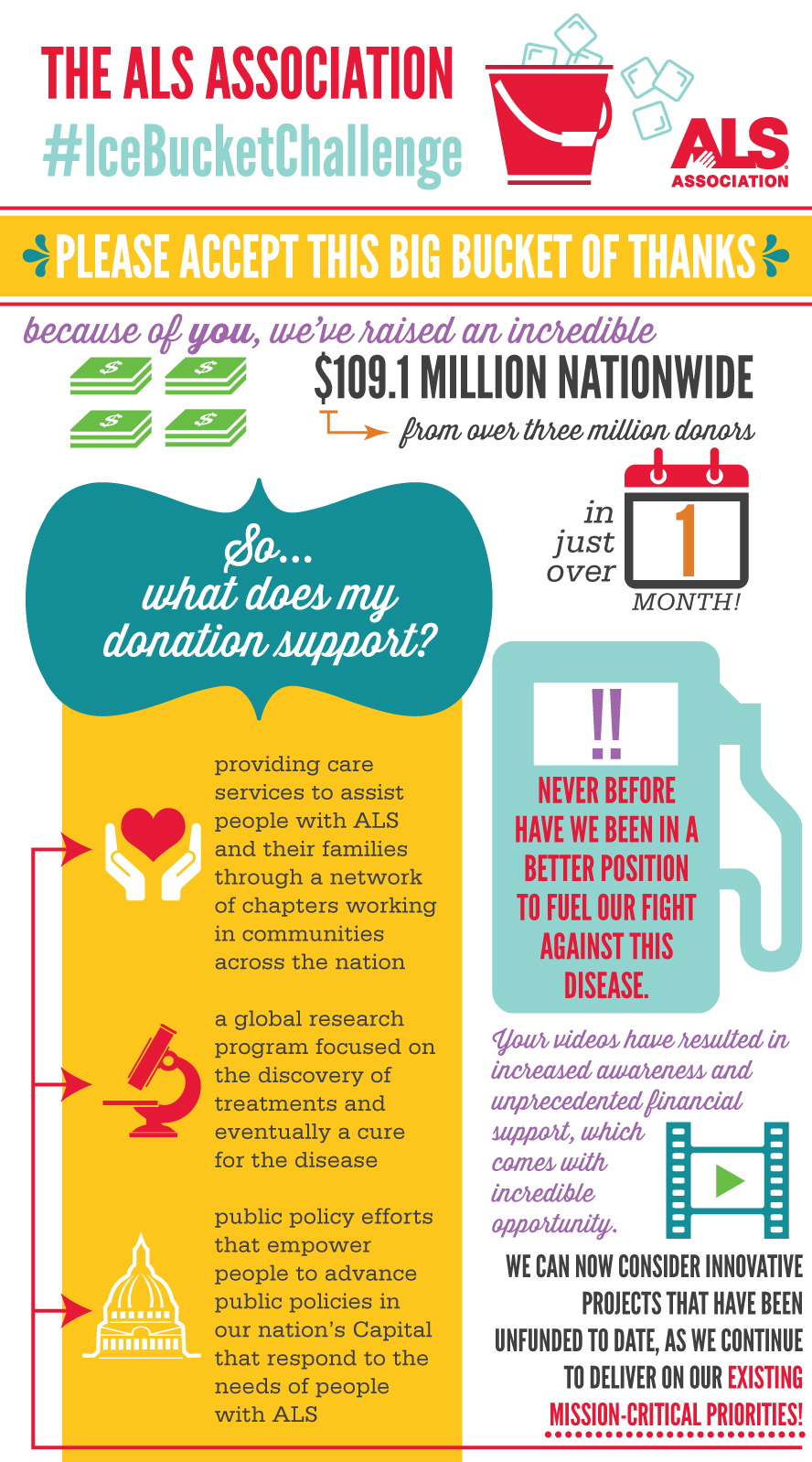 Ice Bucket Infographic
