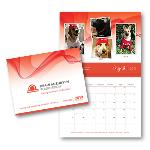 Click here for more information about 2019 BAF Calendar