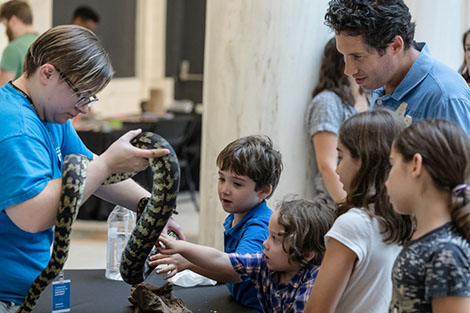 children touching python in the Hall of Sculpture