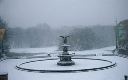 Bethesda Fountain (Winter)