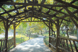 Wisteria Pergola, West 72nd Street Entrance (Spring)