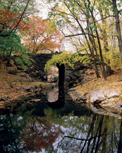 Glen Span Arch and the Loch (Fall)