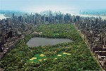 Click here for more information about Central Park Aerial Poster