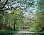 Click here for more information about Bridge 28 and the Bridle Path (Spring)