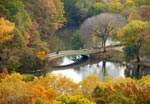 Click here for more information about Bow Bridge (Fall)