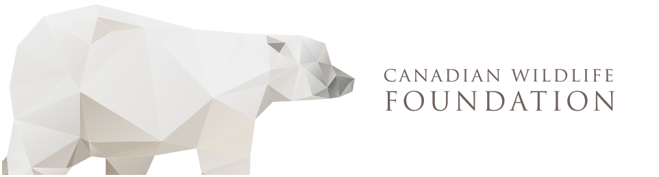 Canadian Wildlife Foundation