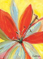 'Lily Bath 6' by Catherine Bonyak
