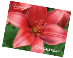 easterseals 2018 calendar cover