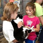Click here for more information about Kids for Critters Camp - July 16-20, 2018 - 9am-3pm - AGES 9-11 ONLY - HSMO's Macklind Ave. Headquarters