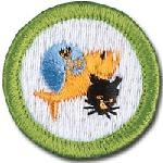 Boy Scouts: Pet Care Merit Badge Workshop on December 1, 2018, 9am-12pm at HSMO's Macklind Ave. Headquarters
