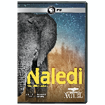 Click here for more information about Nature: Naledi DVD