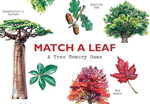 Click here for more information about Match A Leaf: A Tree Memory Game