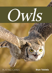 Click here for more information about Owls Playing Cards