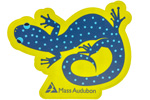 Click here for more information about Mass Audubon Salamander Sticker