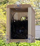 Click here for more information about Window Nest Box