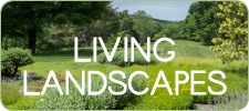 Living landscape button