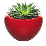 Click here for more information about Large Storm Flowerpot from Normann Copenhagen