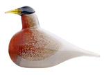 Click here for more information about American Robin from Iittala