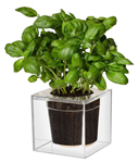 Click here for more information about Boskke Cube Large Planter