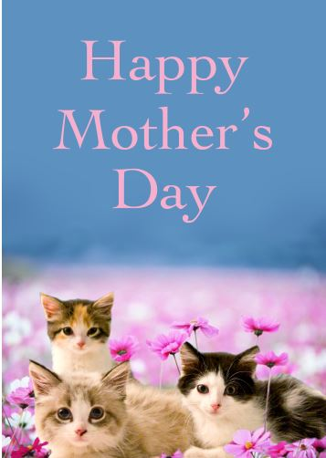 Happy Mothers Day Dog And Cat
