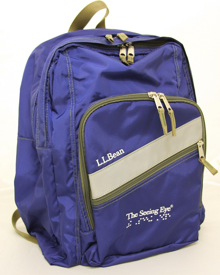 Blue L.L. Bean Backpack