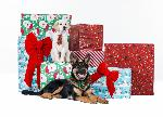 Click here for more information about 2015 Seeing Eye Holiday Card (Pups & Presents)