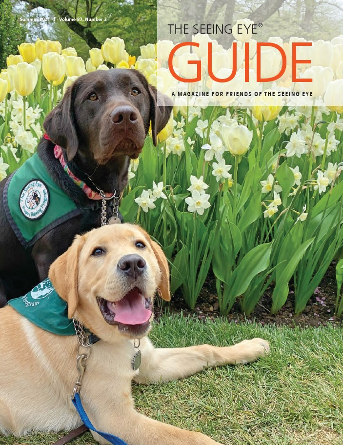 The cover photo of The Guide Summer 2021 shows two Seeing Eye puppies wearing green Seeing Eye Puppy Raiser Program vests. One is a 14-month-old female chocolate Labrador/golden retriever cross, the other is a 4-month-old male yellow Labrador/golden retriever cross. Behind them is a garden of yellow and white flowers.