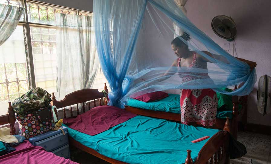 Click here for more information about Mosquito Nets for 2 Families