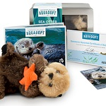 Sea Otter Adoption Kit