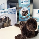 Click here for more information about Sea Lion Adoption Kit