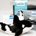 Click here for more information about Wild Killer Whale Adoption Kit