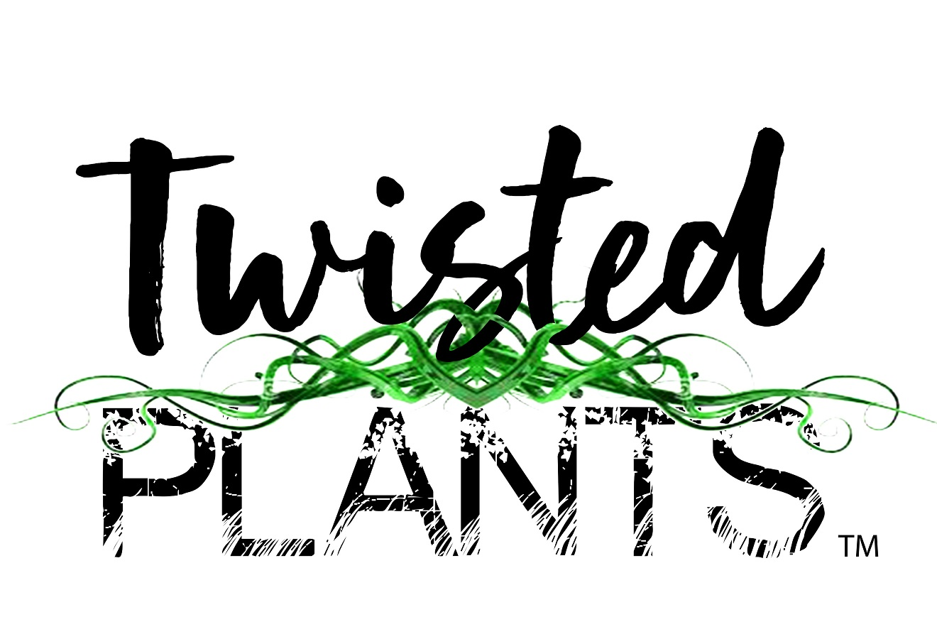 Twisted Plants-small.jpg