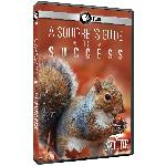 DVD: Nature: A Squirrel's Guide to Success